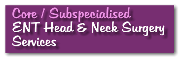 Core / Subspecialised ENT Head & Neck Surgery Services